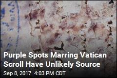Purple Spots Marring Vatican Scroll Have Unlikely Source