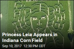 Farmer Pays Tribute to Carrie Fisher With Corn Maze