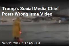 Trump's Social Media Chief Tweets Wrong Storm Video