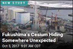 Fukushima's Cesium Hiding Somewhere Unexpected