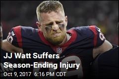 JJ Watt's Season Is Over Following Leg Injury
