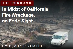 In Midst of California Fire Wreckage, an Eerie Sight