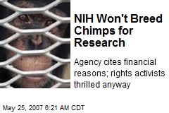 NIH Won't Breed Chimps for Research