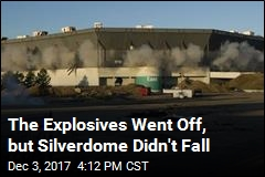 After Implosion, the Silverdome Is Still Standing