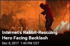Man Saved Rabbit From Wildfire. Or Did He?