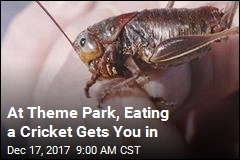 At Theme Park, Eating a Cricket Gets You in