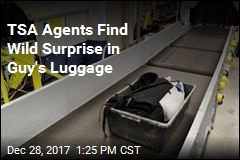 TSA Agents Find Wild Surprise in Guy's Luggage