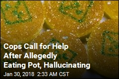 Cops Allegedly Eat Pot on Duty, Start Hallucinating