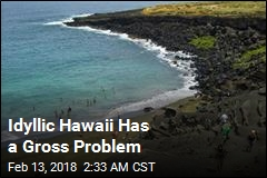 Idyllic Hawaii Has a Gross Problem