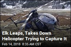 A Leaping Elk Brought Down This Helicopter