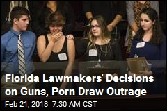 Florida Lawmakers' Decisions on Guns, Porn Draw Outrage