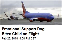 Emotional Support Dog Bites Child on Flight