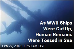 Dig Reveals Bones Likely From Missing WWII Ships