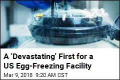 700 Affected by 'Devastating' Glitch at Egg-Freezing Site