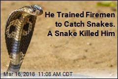 'Snake Whisperer' Dies After Cobra Bite