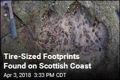 Tire-Sized Footprints Found on Scottish Coast