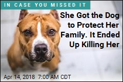 She Got the Dog to Protect Her Family. It Ended Up Killing Her