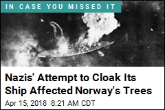 Nazis' Effort to Hide Ship Affected Norway's Trees