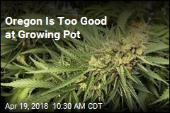 Oregon Is Too Good at Growing Pot