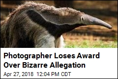 Photo Contest Win Snatched Due to … Stuffed Anteater?