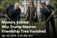 Mystery Solved: Why Trump-Macron Friendship Tree Vanished