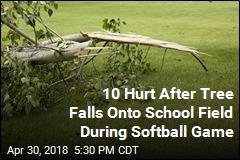 Tree Falls Onto School Field During Softball Game, Hurting 10