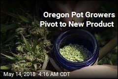 Marijuana Growers Diversify Amid Oregon Glut