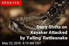Rattlesnake Falls Out of Tree, Bites Kayaker