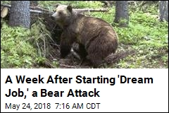 Her Dream Job Was Working With Bears. One Mauled Her