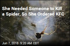 Delivery Guy Turns 'Hero' for Arachnophobe