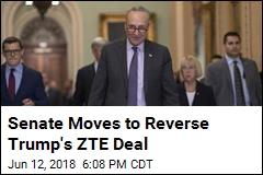 Senate Moves to Block Trump's ZTE Deal