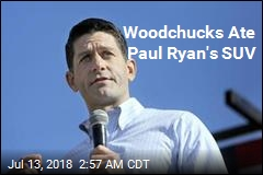 Paul Ryan Says Woodchuck Family Destroyed His Car