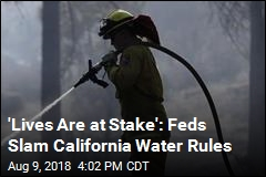 Feds Slam California Over Water Use: 'Lives Are at Stake'