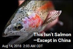 This Isn't Salmon —Except in China