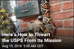 For Postal Worker, a Sssssssssspecial Delivery