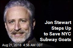 Jon Stewart Rescues Goats Found on Subway Tracks