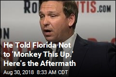 He Told Florida Not to 'Monkey This Up.' Here's the Aftermath
