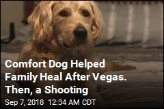 Family That Survived Vegas Shooting Says Comfort Dog Was Shot