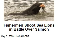 Fishermen Shoot Sea Lions in Battle Over Salmon