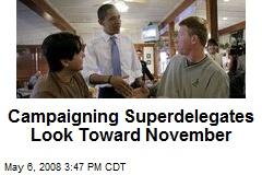 Campaigning Superdelegates Look Toward November