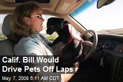 Calif. Bill Would Drive Pets Off Laps