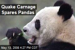 Quake Carnage Spares Pandas