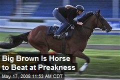 Big Brown Is Horse to Beat at Preakness