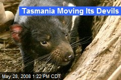 Tasmania Moving Its Devils
