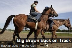 Big Brown Back on Track