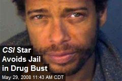 CSI Star Avoids Jail in Drug Bust