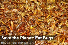 Save the Planet: Eat Bugs