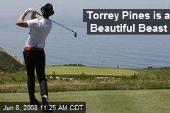 Torrey Pines is a Beautiful Beast