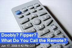 Doobly? Fipper? What Do You Call the Remote?