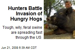 Hunters Battle Invasion of Hungry Hogs